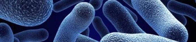 legionella banner Legionella. Desinfección y limpieza de virus y Bacterias.